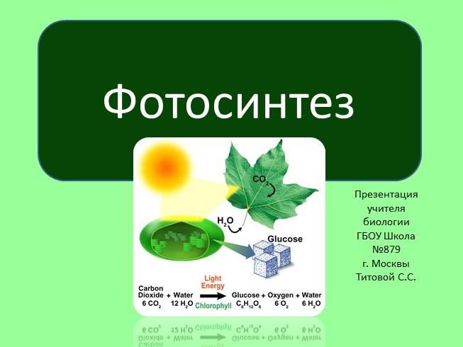 Презентация по биологии фотосинтез 10 класс