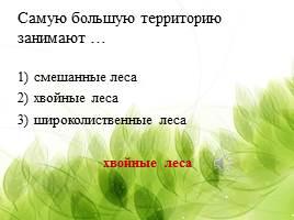 какие леса занимают большую территорию в россии где можно взять кредит самаре