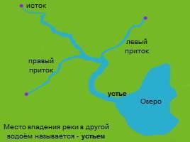 Реки - Части реки, слайд 11